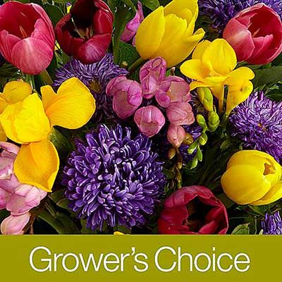 proflowers-growers-choice