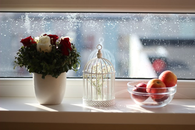 windowsill decor with plant and birdcage